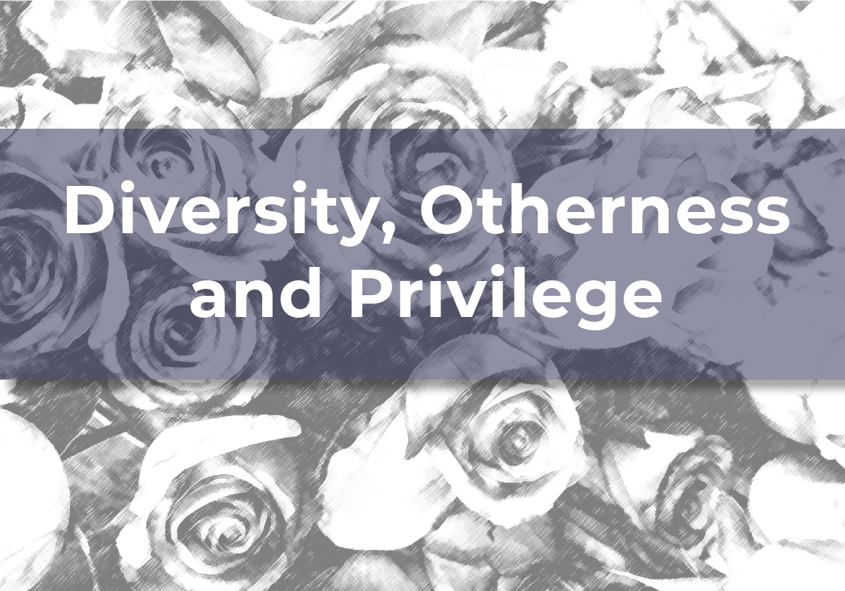 Diversity, Otherness and Privilege booklet – low colour pdf
