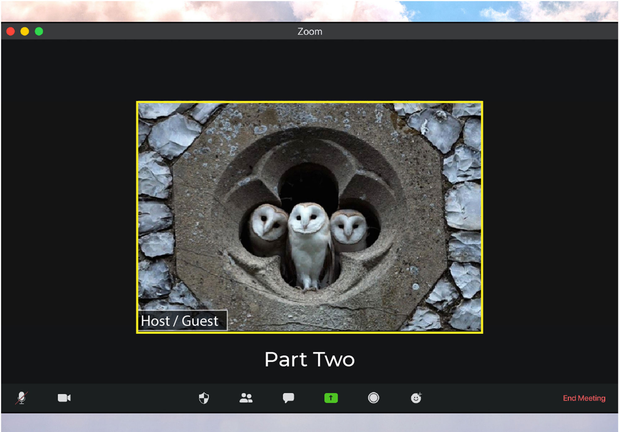 Has the Holy Spirit made it online? Practical theology in a Zoom Room: Part 2
