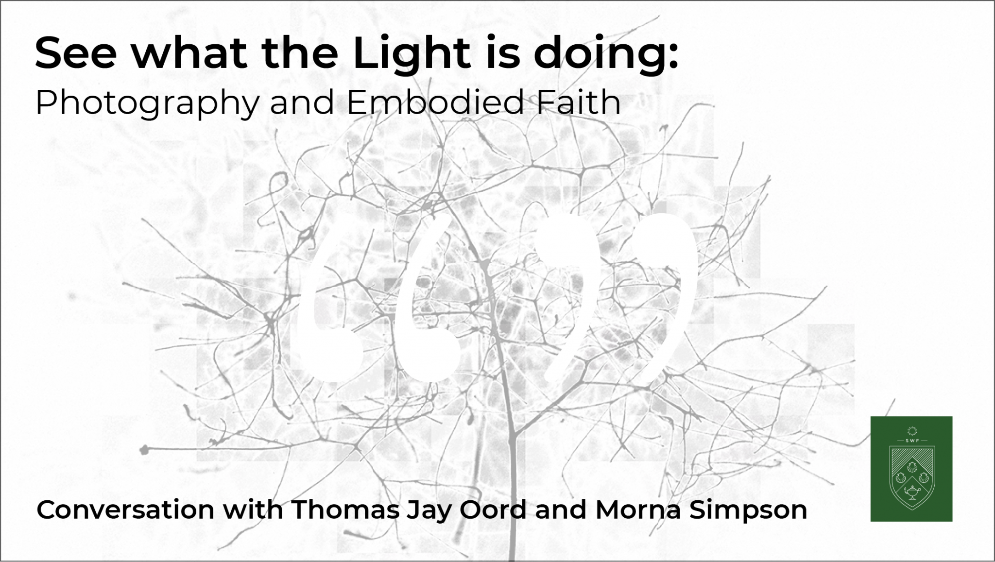 Podcast 6: See what the Light is doing